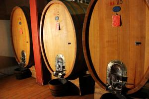Piemonte_vino_3